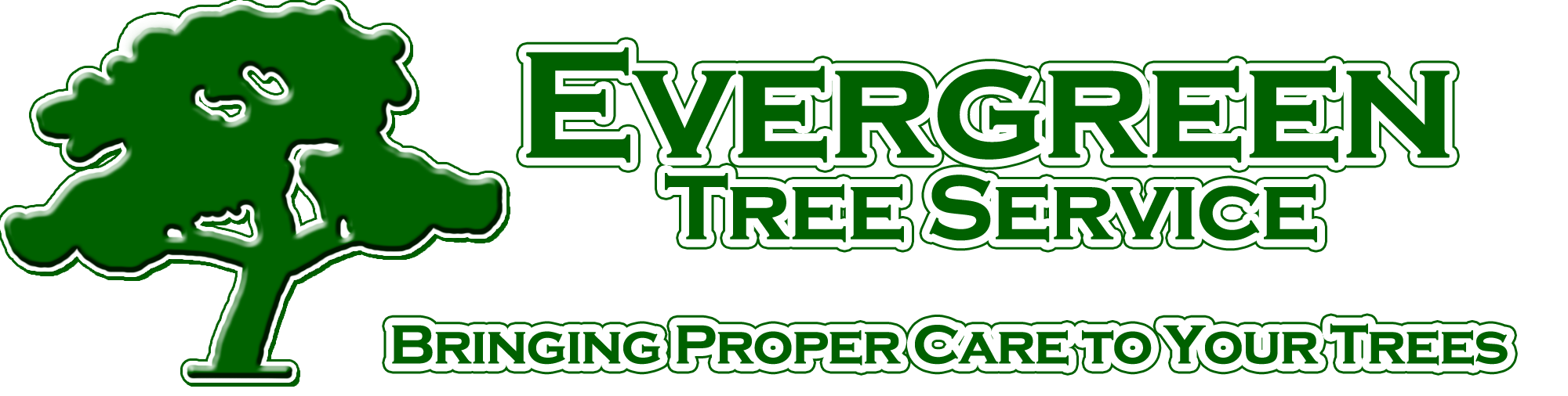 Professional Tree Services Purcellville, Virginia Tree. Free Parts Inventory Software. Are Reverse Mortgages A Good Idea. What Is The Interest Rate For Wells Fargo Savings Account. Malpractice Insurance Lawyer. Cheapest Fax To Email Service. Paris Las Vegas Box Office Seton Hall Online. Plastic Surgeon Palm Beach Gardens. Mpp To Pdf Converter Online Jeep Dealers Ga